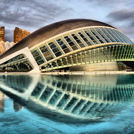 Hemisfèric at Dawn by Dark Reid - Buildings & Architecture Public & Historical ( reflections, valencia, science park, spain,  )