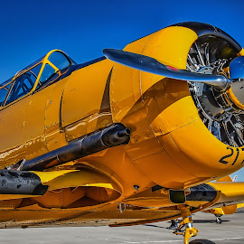 Static Display by Ron Meyers - Transportation Airplanes