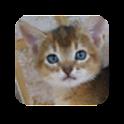 タッチパズル icon
