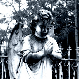 Praying Angel by Jason Parrott - Buildings & Architecture Statues & Monuments ( religion, stone angel, cemetery angel, folkston, south, georgia, photography, graveyard )