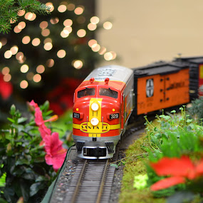 Holiday Train by Stephanie Parmley Givens - Artistic Objects Toys (  )