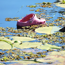 Be ware the Croc by Fiona Rob - Artistic Objects Clothing & Accessories ( nature, blue, plants, pink, lake, day, leaves, shoe, artistic, object )