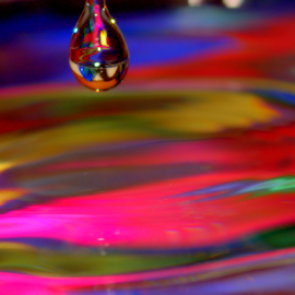Letting Go by Janet Lyle - Abstract Water Drops & Splashes ( water, droplet, colors )