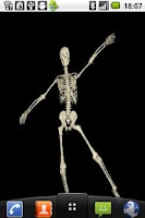 Screenshot of Funny Skeleton Dancing LWP