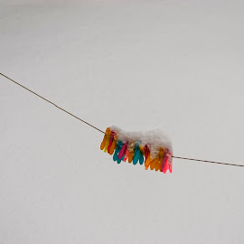 Pegs 2 by John Carr - Artistic Objects Other Objects ( snowfall, winter, colourful, cold, clothes pegs, exteriors, snow, laundry, colours, colorful, mood factory, vibrant, happiness, January, moods, emotions, inspiration )