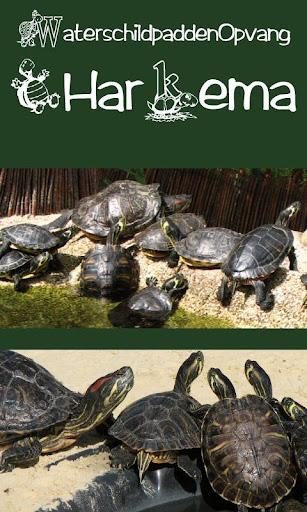 Schildpaddenopvang Harkema