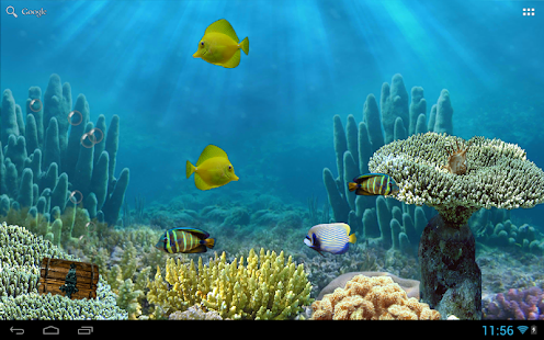 free aquarium free live wallpaper apk for windows 8 download android apk games apps for. Black Bedroom Furniture Sets. Home Design Ideas