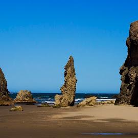Lone Spire by Ken McDougal - Landscapes Caves & Formations ( oregon beaches, spires, bandon oregon, rocks, rock spires )