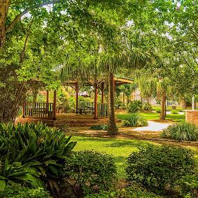 Palafox Park by Jon Cody - City,  Street & Park  City Parks ( nature, park, green, landscape, garden, gazebo )