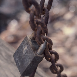 Locked by Lois Romer - Artistic Objects Industrial Objects ( chain, lock )
