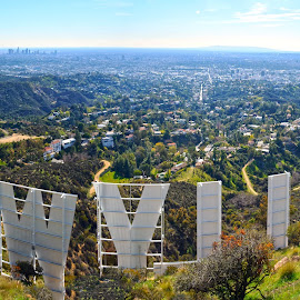 Iconic Hollywood Sign by Art LA - City,  Street & Park  Skylines ( lake hollywood, losangeles, landscape, panorama, hollywoodsign )