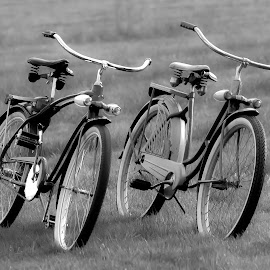 by Larry Rogers - Transportation Bicycles