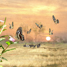 The Land of Wonders by Bjørn Borge-Lunde - Digital Art Abstract ( fantasy, butterfly, nature, sebra, wildlife, africa )