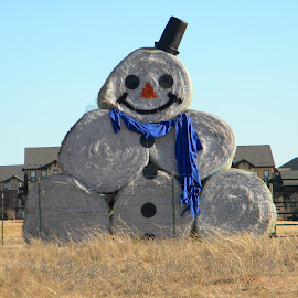 Frosty by Greg Moore - Public Holidays Christmas ( happy, texas, hay bale, smiling, frosty )