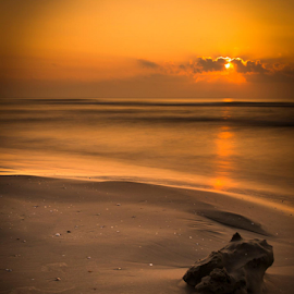 The Toy by Ovidiu Caragea - Artistic Objects Toys ( golden hour, sunset, sunrise )