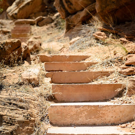Sandstone stairway by Matt Freestone - Nature Up Close Rock & Stone ( vernal, vacation, dinosaur, copyrighted )