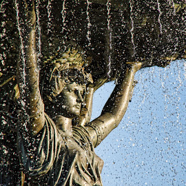 Raining down on Liberty by Diane Hollister Carrigan - Buildings & Architecture Statues & Monuments ( statues, architecture )