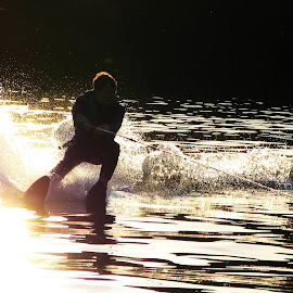 Skiing on Golden Water by Jack Skyyler - Sports & Fitness Watersports ( boating, water, skiing, sunset, gold, skii )