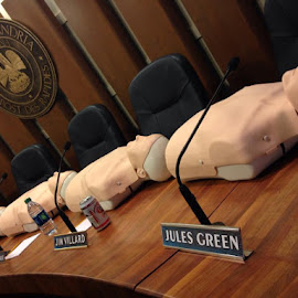 City Council Dummies by Ben Bombs - News & Events Politics