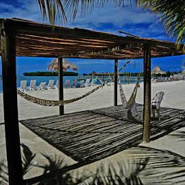 Roatan Hammocks by Dub Scroggin - Landscapes Beaches ( roatan, hammocks, beach, caribbean, honduras )