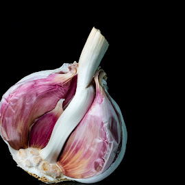 Gorgeous Garlic by Anthony Bowstead - Food & Drink Ingredients