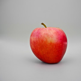 Gala Apple by Allen Randall - Food & Drink Fruits & Vegetables ( gala apple )