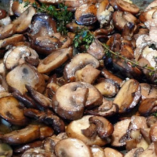 Mifgash Mushrooms