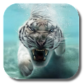 App Tiger Live Wallpaper APK for Windows Phone