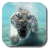 App Tiger Live Wallpaper APK for Kindle