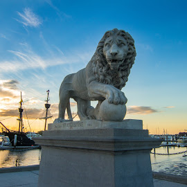 St Augustine Lion by Jason Green - Buildings & Architecture Statues & Monuments ( history, staugustine, lion, 904, bridge )