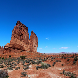 by Dipali S - Landscapes Deserts ( mountains, desert, arches national park, utah, arid, road, red rocks, vegetation, rocks )