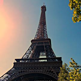Eiffel Tower by Addie Jo Jackman - Buildings & Architecture Statues & Monuments ( paris, eiffel tower, park, trees, sun )