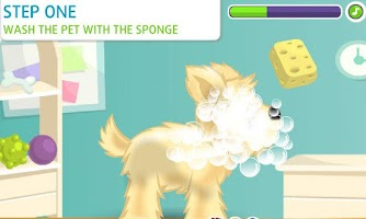 Screenshot of Pet Caring