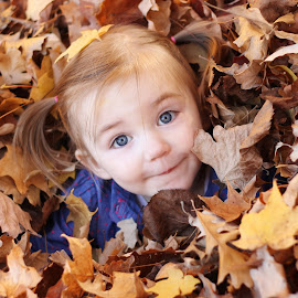 Leaf Pile by Danielle Atchison - Babies & Children Children Candids ( child, girl, tree, autumn, colors, fall, play, leaf, leaves )