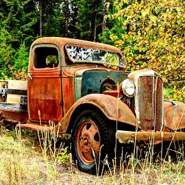 Overgrown by Gary Winterholler - Transportation Automobiles