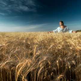 Cropland in the sunset  by Andrei Grososiu - Landscapes Sunsets & Sunrises ( wheat, tulcea, woman, sunset, cropland )