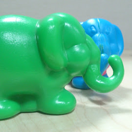 Toy Elephants by Kaushik Mondal - Instagram & Mobile Other ( love, red, blue, elephant, green, toys )