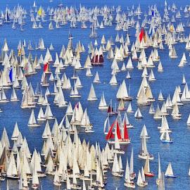 Barcolana Trieste by Marco Poli - Sports & Fitness Watersports