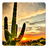Magical Southwest Landscapes