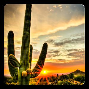 Cover art Magical Southwest Landscapes