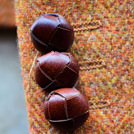 Buttons by Heather Aplin - Artistic Objects Clothing & Accessories ( jacket, autumn, fall, tweed, buttons, english, leather )