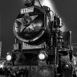 Steel Horse by Martin Jahn - Transportation Trains ( history, locomotive, train, night, steam,  )