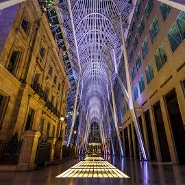 Toronto Downtown by Vanko Dimitrov - City,  Street & Park  Night ( toronto )