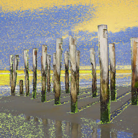 Poles in Dunedin by Marion Metz - Digital Art Places ( old, wood, abstract art, dunedin, beach, poles, new zealand )
