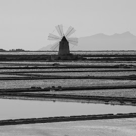 Windmill in Marsala - Sicily by Pietro Ebner - Landscapes Travel (  )