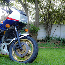 My 1983 VF750F by Jacques Mongis - Transportation Motorcycles ( #vf750f #honda #classic #interceptor #v-four )
