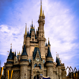 Magic Kingdom Castle by Jason Hepler - Travel Locations Landmarks ( mickey mouse, vacation, magic kingdom, castle, disney )