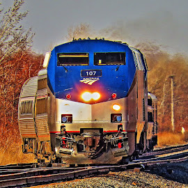 by Brooks Travis - Transportation Trains ( passenger, amtrak, locomotive, raillroad, railfan, train, ge,  )