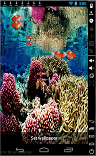 Coral Reef Livewallpaper - screenshot