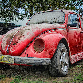 Old Beetle by Alin Tatu - Transportation Automobiles ( car, old, red, hdr, rusted, beetle )